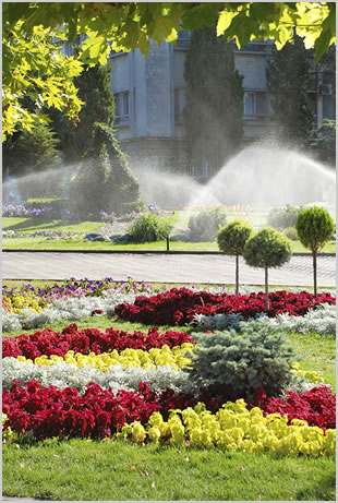 Lawn and Sprinkler Service