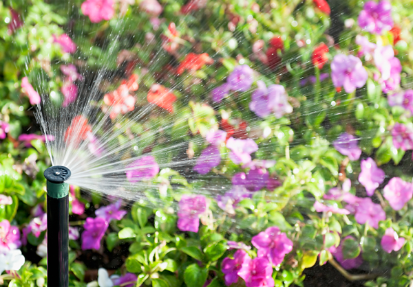 Why Your Sprinkler System Needs a Spring Start-Up