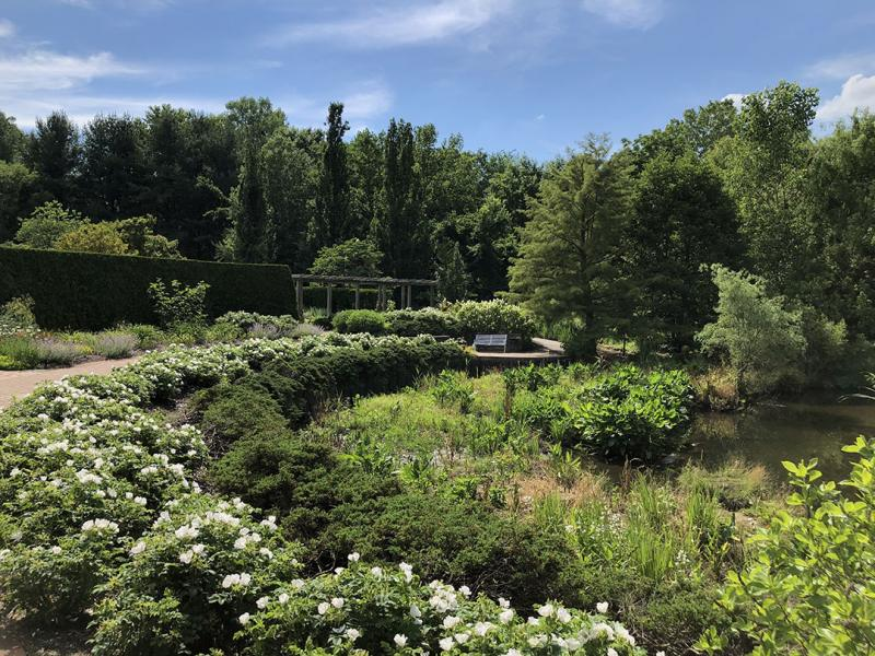 Road Trip: Visit these 5 Beautiful Gardens in Ohio