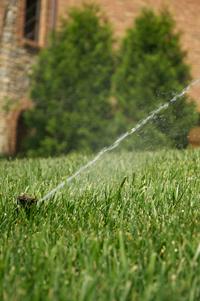 backflow-preventer-sprinkler-system-maintenance