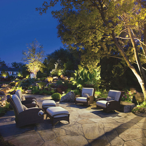 Bring WOW to Your Home with LED Landscape Lighting