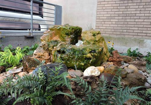 Cincinnati Gets More Green with Macy's Habitat Roof