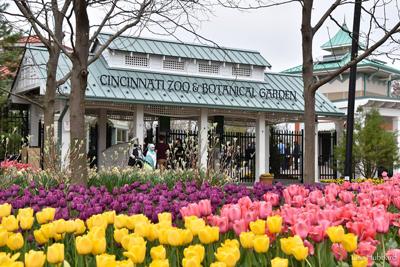 3 Great Gardening Resources for Greater Cincinnati