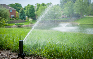 How a Smart Sprinkler Controller Makes Your Life Easier