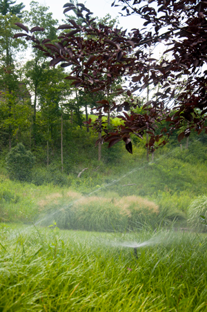 What it Takes to Become a Certified Lawn Irrigation Professional