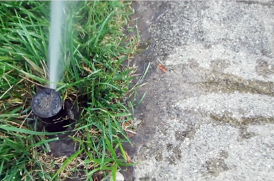 Has Your Lawn Sprinkler System Sprung a Leak?