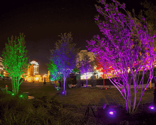 LED Landscape Lighting Brings Holiday Cheer with the Change of a Bulb