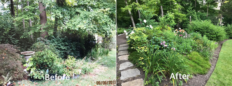 Lush Native Gardens Offer a Beautiful Habitat-- for Wildlife and for People!