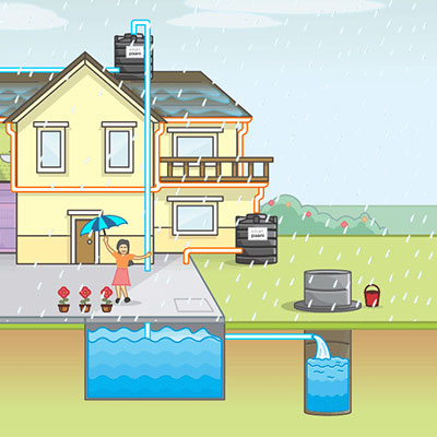 It's Easy to Harvest Rainwater for Your Landscape Irrigation