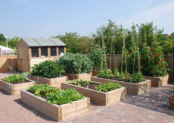 Staying Home More These Days? Plan Your Spring Garden