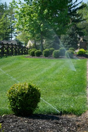 We Love Sprinkler Repair and Maintenance!